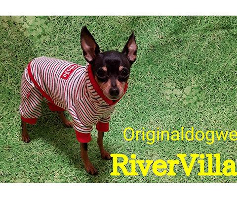 RiverVillage
